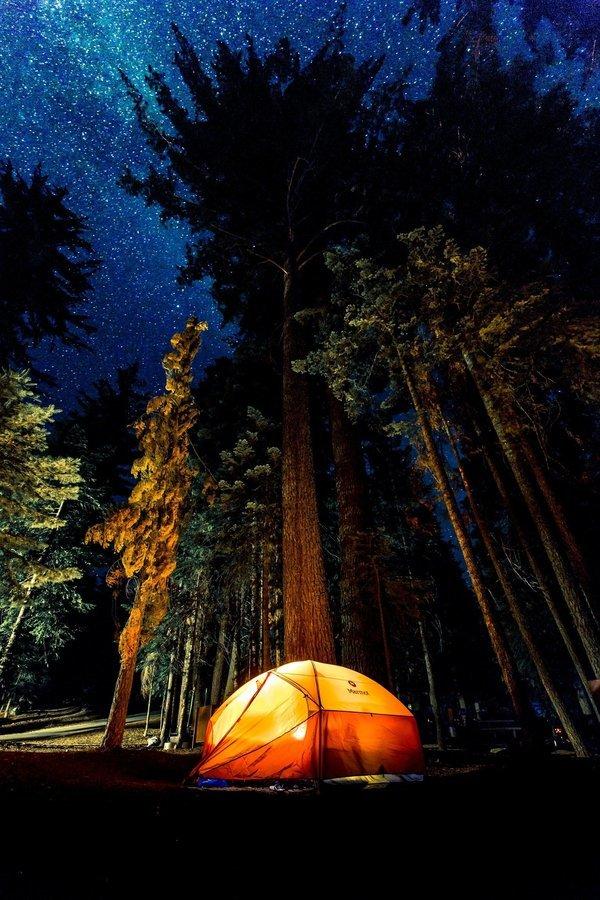 Swiss Tent Stay in Riverside Type 5 - Tour