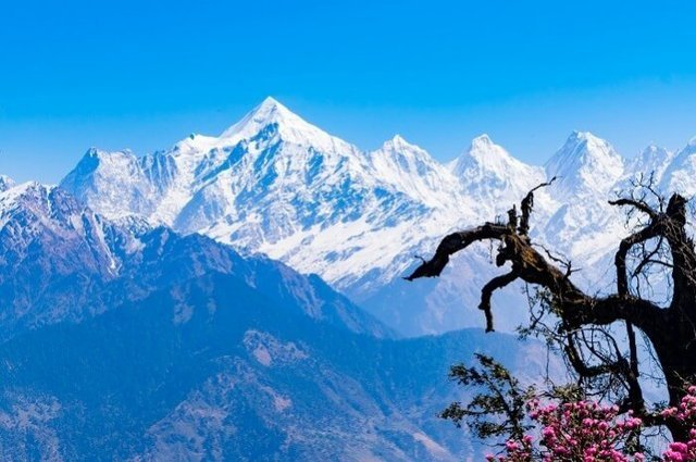 Uttarakhand Tour Packages with Price - Collection