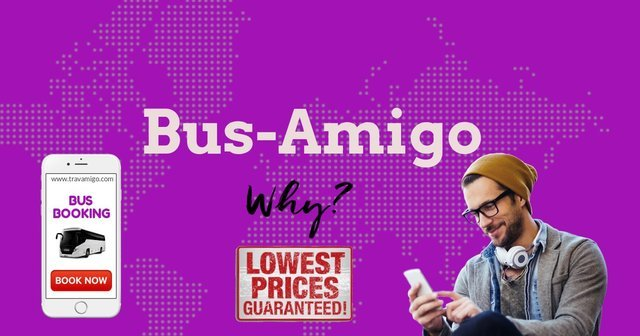 Bus-Amigo - Collection