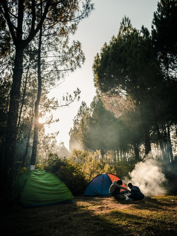Alpine tent stay in Jungle side type 3 - Tour