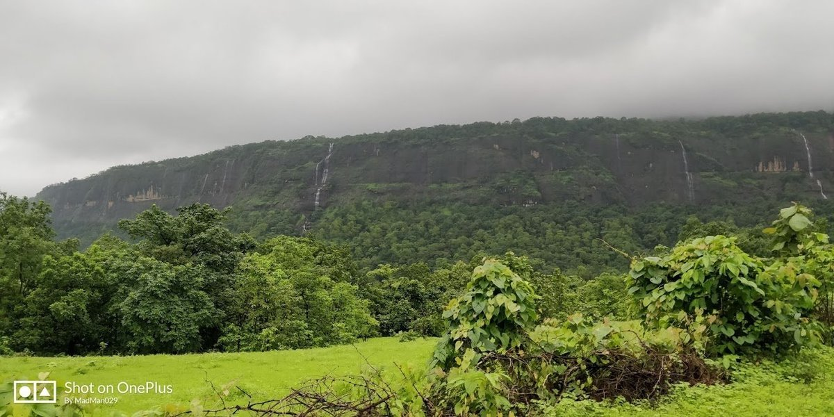 Lonavala to Bhimashankar Range Trek - Tour
