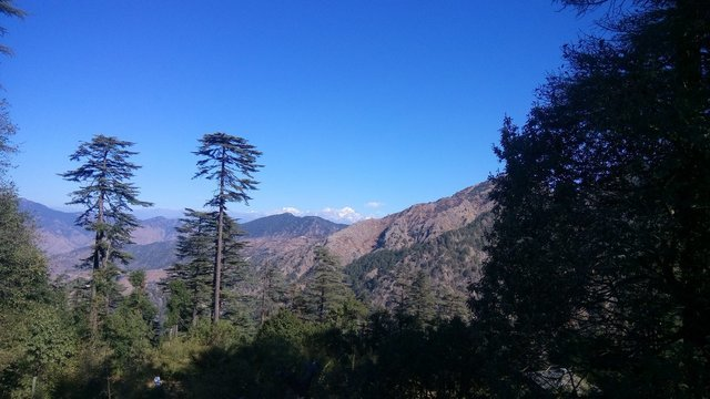 Dhanaulti Tour - Collection