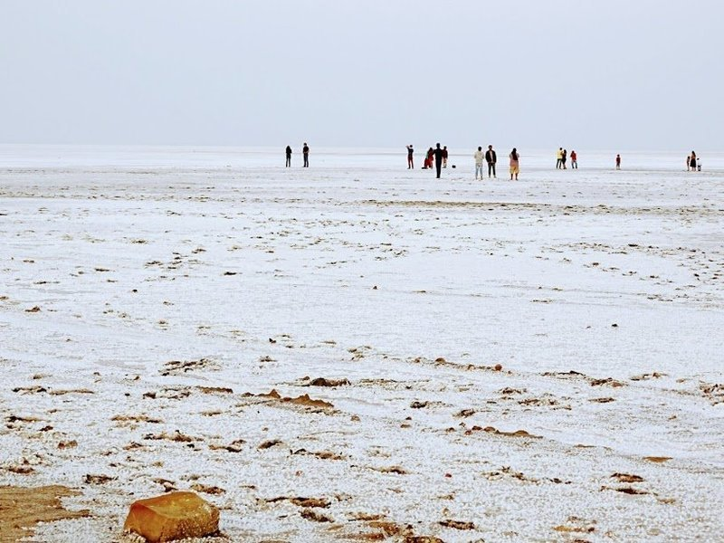 Great Rann Of Kutch – New Year Special - Tour