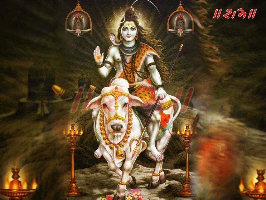 Baba Baidyanath Dham Jyotirlinga Tour - Tour