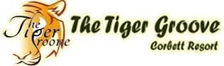 The_Tiger_Groove.png - logo