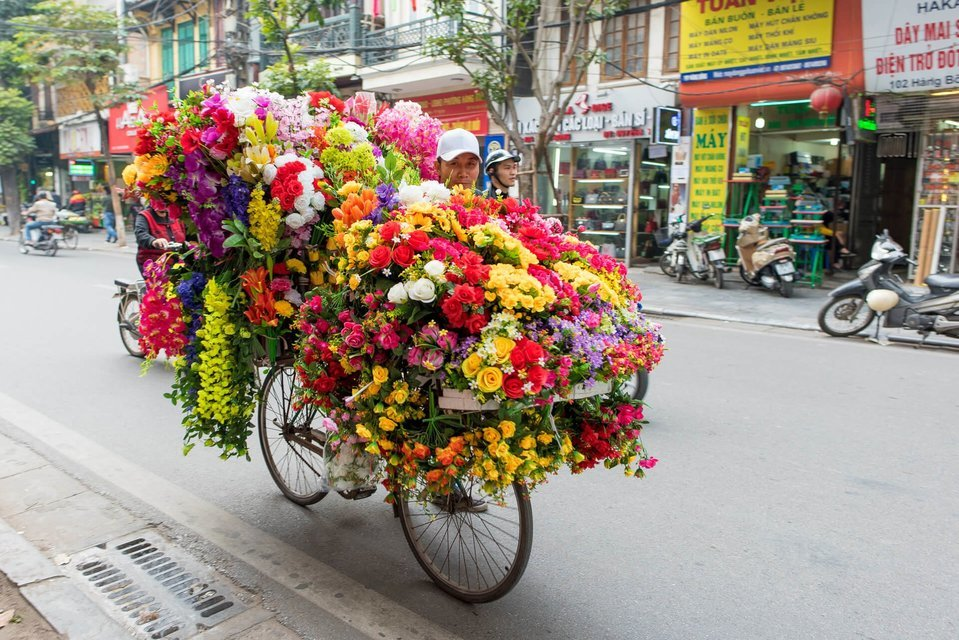 Vietnam Natural Delights - Tour