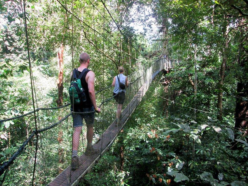 Explore Mulu and Kota Kinabalu - Tour