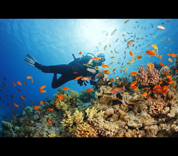 Sibuti Coral Reefs and Bario Exploration - Tour