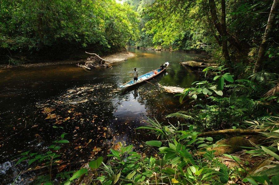 Experience Kuching, Batang Ai and Mulu Caves - Tour