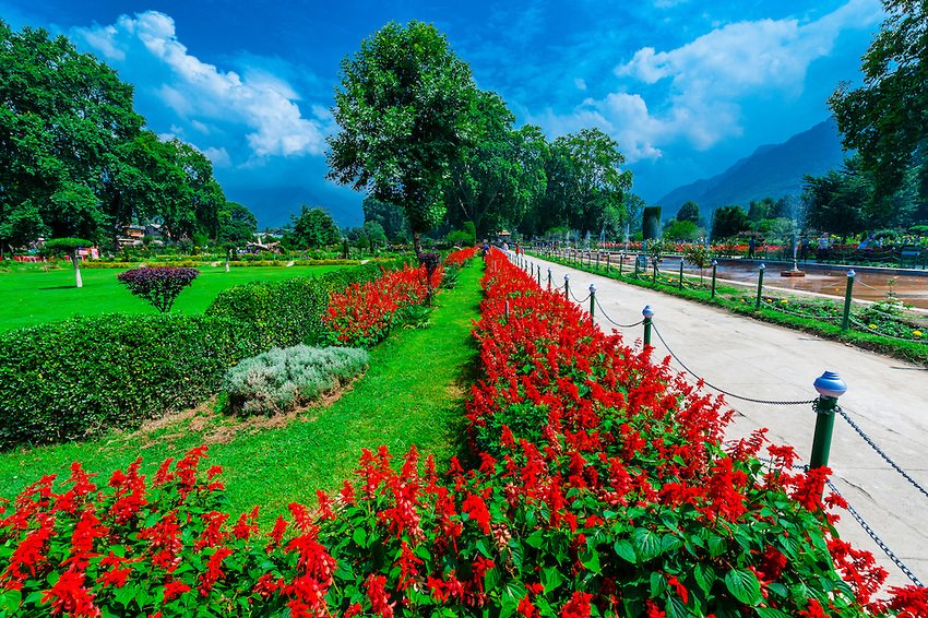 Best Of Kashmir - Tour