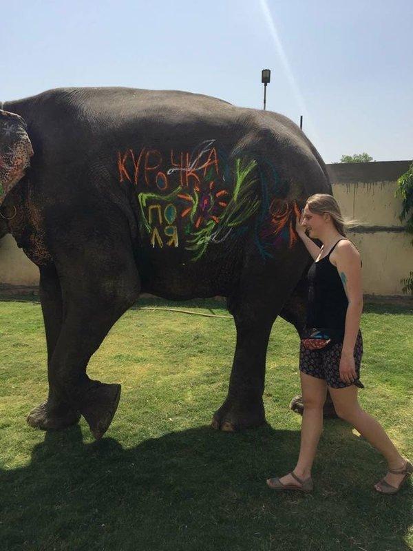 a walk with elephant - Tour