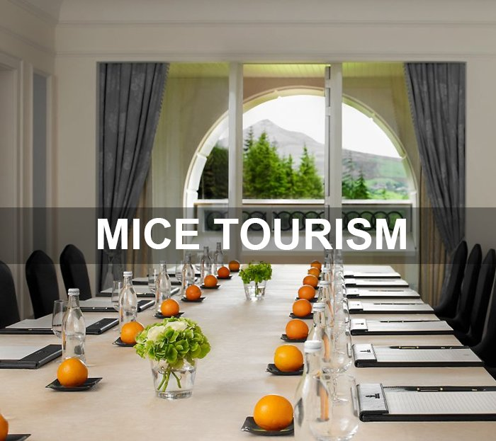 MICE TOURS - Collection