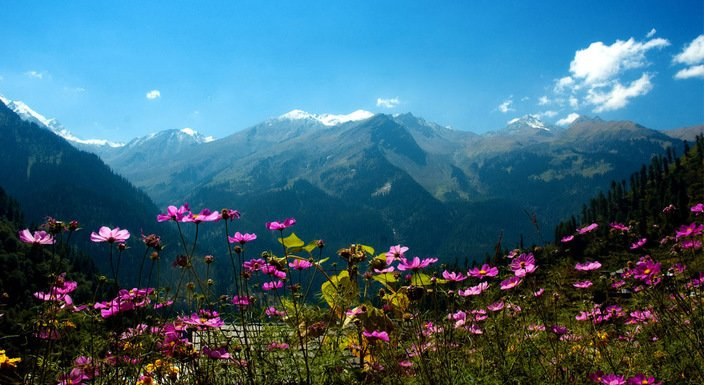 Manali Weekend Special - Tour