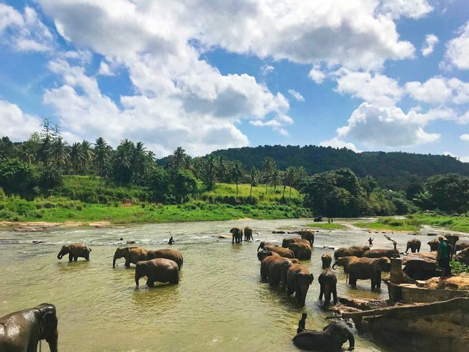 Amazing Sri Lanka- 8D|7N - Tour