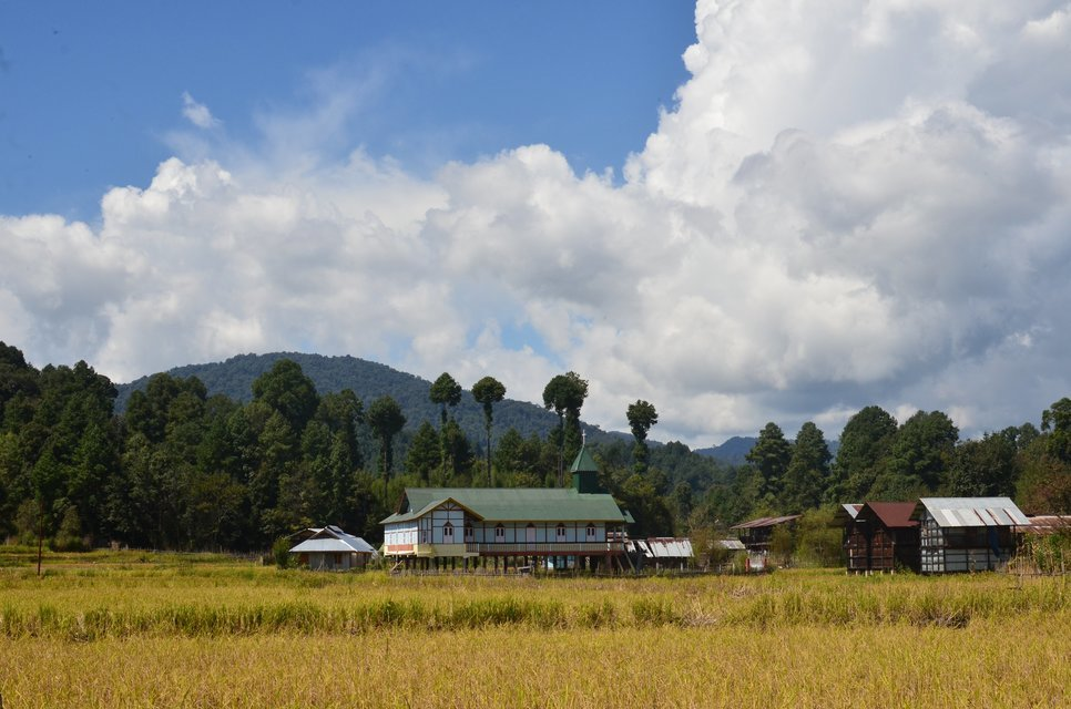 Ziro Valley Tour - Tour