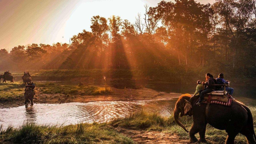 Manas National Park - Guwahati tour - Tour