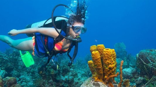 Scuba & Water Sports in Goa
