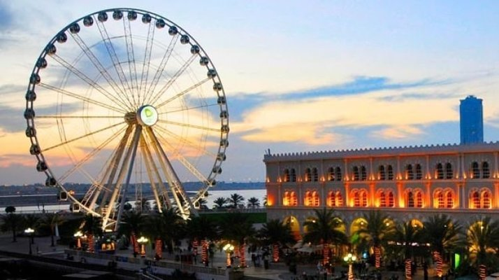 Sharjah City Half Day Tour from Dubai - Tour
