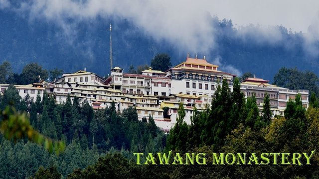 Tawang - Collection