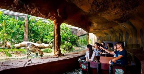 Singapore River Safari - Tour