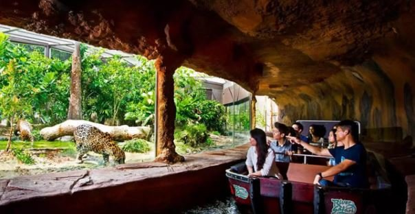 Singapore River Safari - Tour