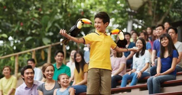 Jurong Bird Park - Tour