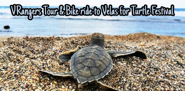 Tour & Bike ride to Velas for Turtle Festival