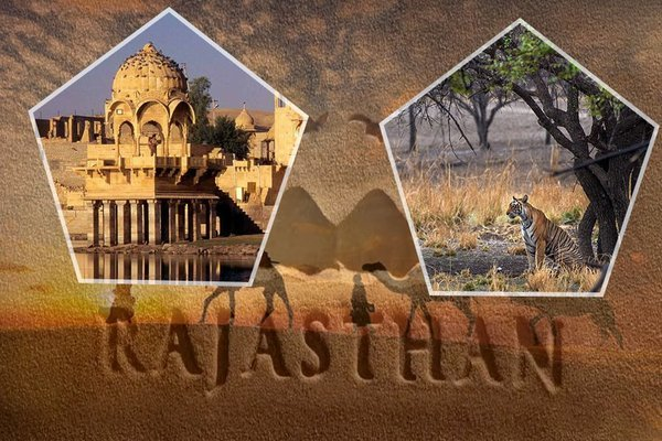 Royal Rajasthan with Ranthambore Tour - Tour