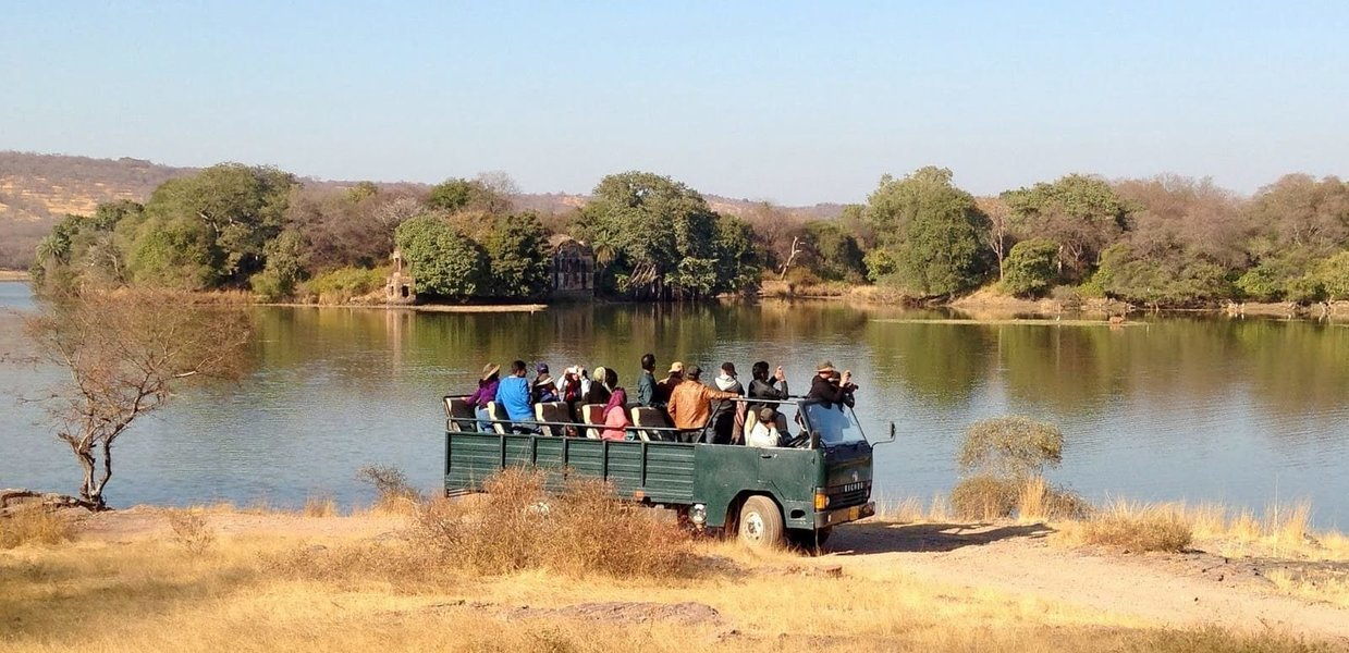 Ranthambore Economy Package - Tour