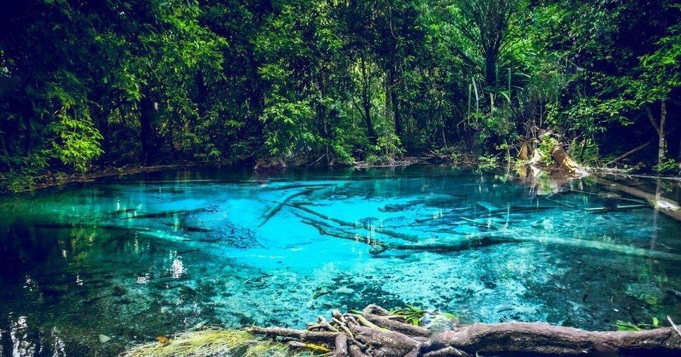 Jungle Tour Emerald Pool & Tiger Cave Temple - Tour