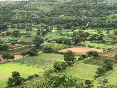 Monsoon Waterfall Special & Agro Tour