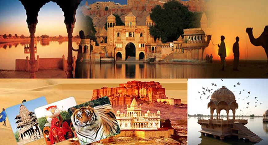 India Tour with Ranthambore - Collection