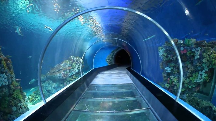 Antalya Aquarium Tickets with Hotel Transfers - Tour