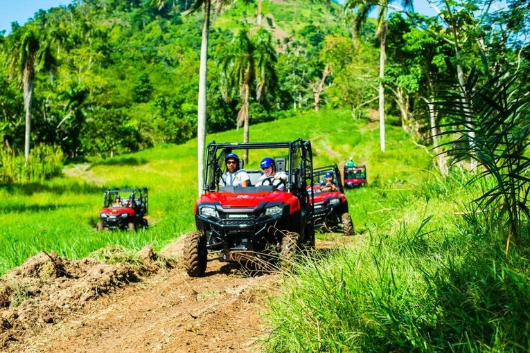 Jungle Buggies - Tour