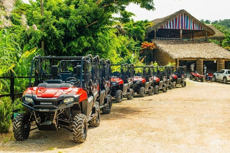 Combo Jungle Buggies + Monkeyland - Tour