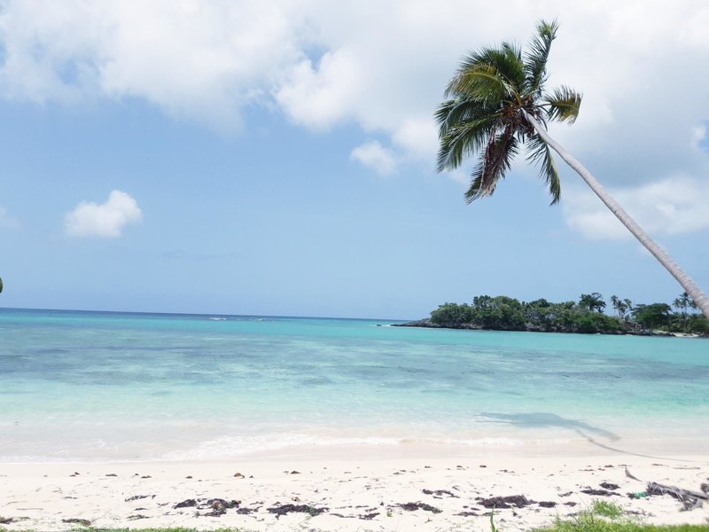Best Beaches Samana - Tour