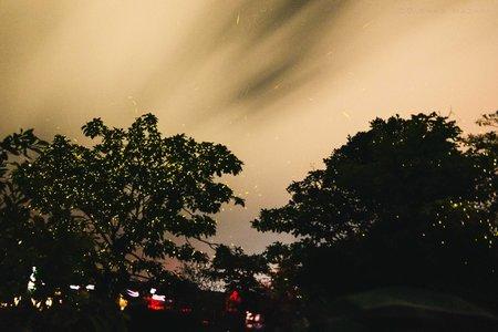 Bhandardara Fireflies Special Camping From Pune