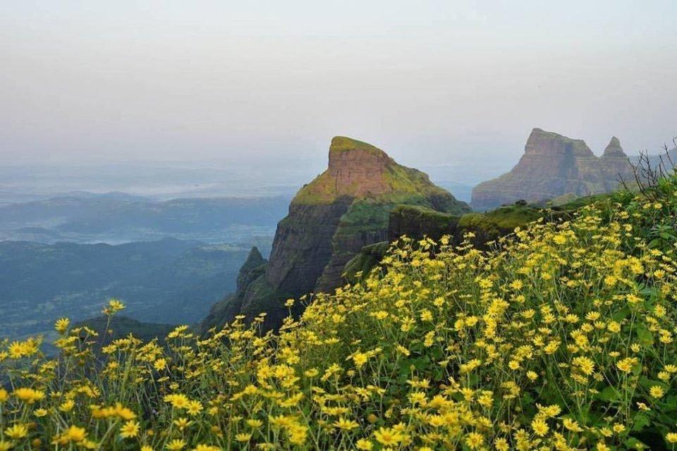 One day trek to Kalsubai Peak - Tour