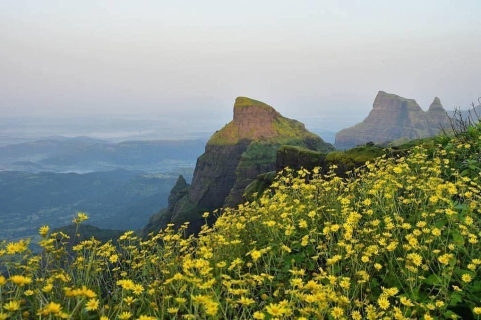One day trek to Kalsubai Peak - Tour
