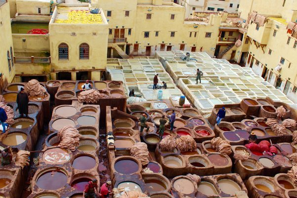 Morocco Royal Cities Tour from Casablanca - Tour