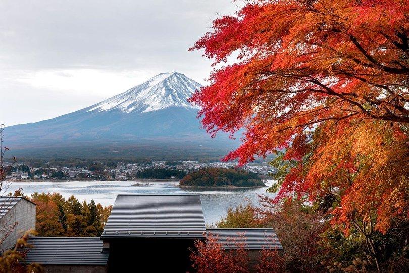 MEMOIRS OF A GEISHA - JAPAN IN FALL COLORS - Tour