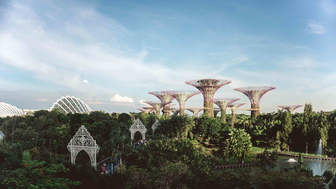 5-Day Nature Tour of Singapore - Tour