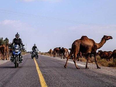 Marruecos Atlas y Desierto