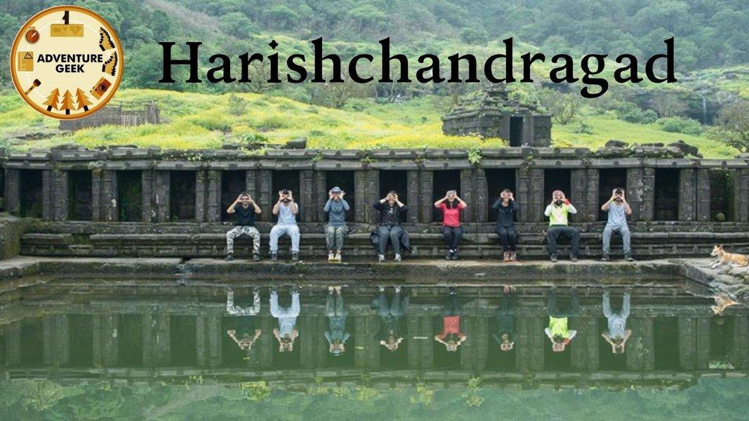 Trek to Harishchandragad Special Sonki Flower - Tour