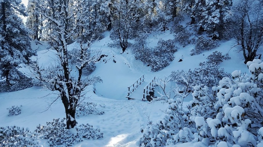 kedarkantha Trek – The Gods Trail - Tour