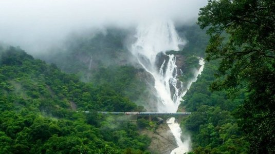 Trek to Dudhsagar Waterfall, Goa