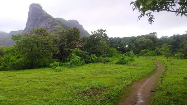 One Day Monsoon Trek To Tandulwadi Fort - Tour