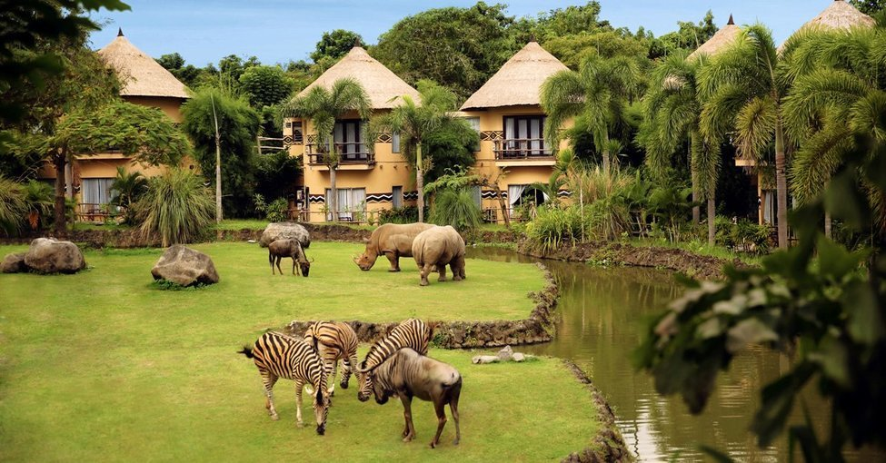 Bali Family Fun - Tour