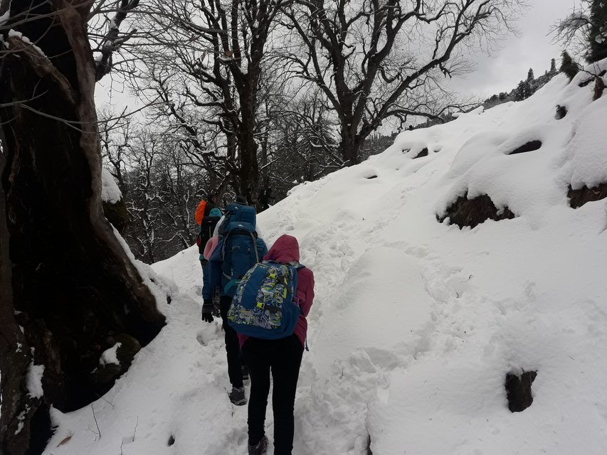 Winter Snow Trek In Manali - Tour