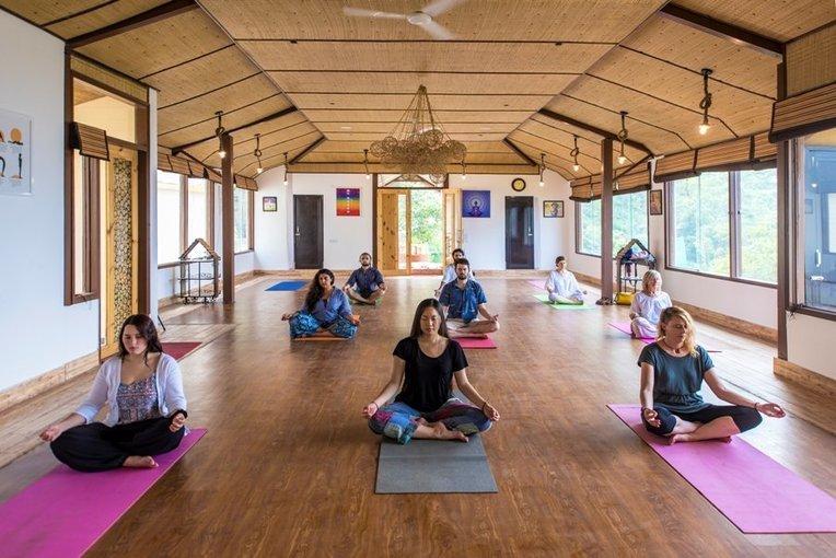 Veda5 - Yoga and Ayurveda Package - Tour